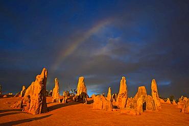 Pinnacles rock formation with rainbow, Pinnacles National Park, Western Australia, Australia