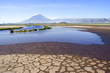 Shore of Lake Natron, Oldoinyo Lengai volcano at back, Tanzania, Africa