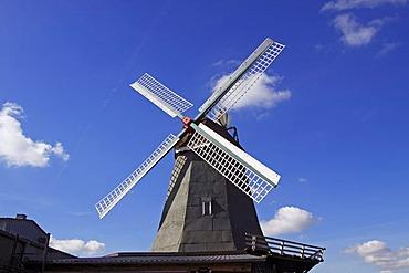 """Old windmill """"Anna"""", Dutch style, Suederhastedt, Dithmarschen district, Schleswig-Holstein, Germany"""