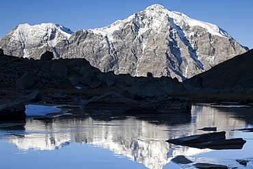 Mt. Ortler reflected in a mountain stream, Sulden, Ortler mountain range, Stelvio National Park, South Tyrol, Italy, Europe