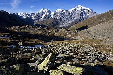 Ortler mountain range, Stelvio National Park, South Tyrol, Italy, Europe