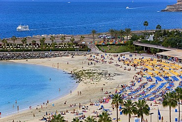 Playa Amadores beach near Puerto Rico, Grand Canary, Canary Islands, Spain, Europe