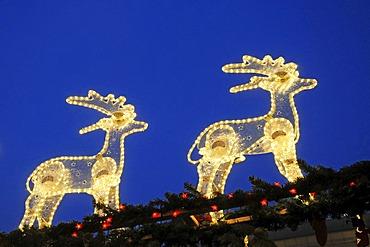 Chrismas lighting, fairy lights, reindeers, christmas market, Dortmund, North Rhine-Westphalia, Germany, Europe