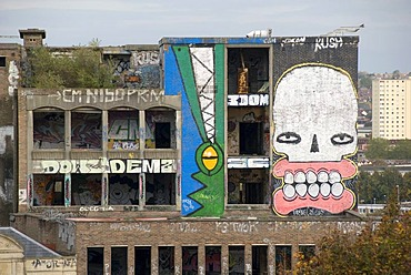 Large graffitit on an old, abandoned building, writing, crocodile, face, Bristol, England, Great Britain, Europe