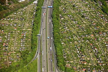 Aerial photo, Duisburg motorway junction A40 and A59, allotment gardens, Duisburg, Ruhr area, North Rhine-Westphalia, Germany, Europe