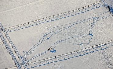 Aerial picture, Homberg paddock at the DGB Hattingen school, horses in snow, Ruhr area, North Rhine-Westphalia, Germany, Europe