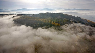 Aerial photo, morning fog in autumn over the south of Meschede, Sauerland, North Rhine-Westphalia, Germany, Europe