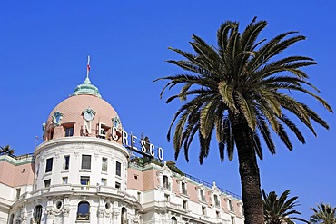 Hotel Negresco and palm, Nice, Alpes-Maritimes, Provence-Alpes-Cote d'Azur, Southern France, France, Europe