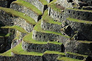 Terraces of Machu Picchu, Peru, South America