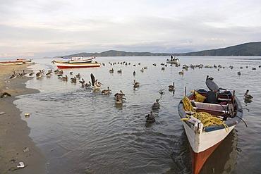Fishing boats on the beach, Santa Fe, Caribbean, Venezula, South America