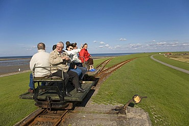 Holiday guests being driven from Luettmoorsiel to Hallig Nordstrandischmoor on a wagon, North Sea, Northern Frisia, Schleswig-Holstein, Germany, Europe