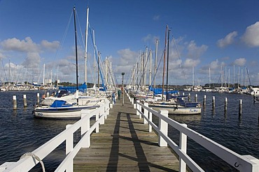 Marina or yacht harbor at Burgtiefe on Fehmarn Island, Schleswig-Holstein, Germany, Europe