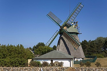 Windmill and museum in the community of Nebel on Amrum Island, North Frisia, Schleswig-Holstein, Germany, Europe