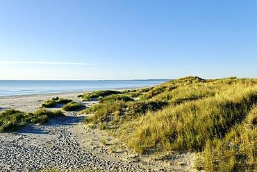 Baltic Sea near Albaek, Jutland, Denmark, Europe