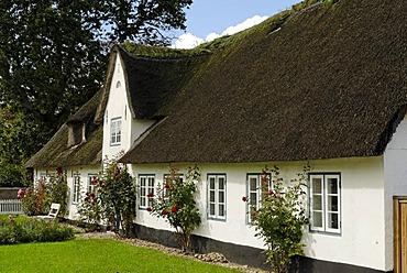 Thatched roof house, Hoejer, Jutland, Denmark, Europe