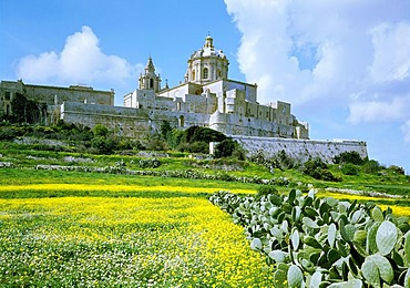 Town walls and Saint Peter's and Paul's Cathedral, Mdina, Malta, Europe
