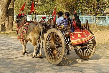 Family sitting on an ox-drawn cart, decorated, Bagan, Burma, Myanmar, Asia