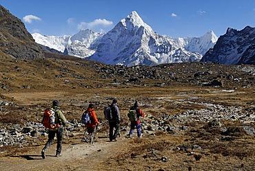 Trekking group at Chola Khola Valley near Dzonglha in front of Mount Ama Dablam, 6856m, Sagarmatha National Park, Khumbu Himal, Nepal, Asia