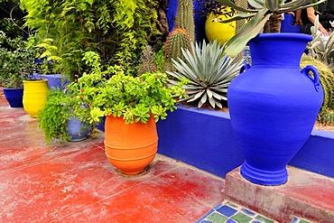 Jardin Majorelle, Marrakech, Morocco, Africa
