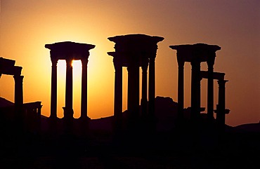 Columns of the desert town Palmyra in the sunset, Syria, Middle East, Orient