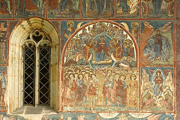 Exterior frescoes, Church of the Assumption and St. George, UNESCO World Heritage Site, Humor, Southern Bukovina, Moldova, Romania, Europe
