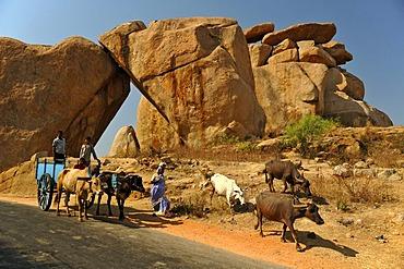 Bullock cart in front of granite rocks, Hampi, Karnataka, India, South Asia