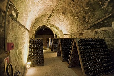 Mumm Champagne cellar, Reims, Champagne-Ardennes, France