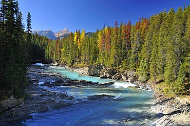 Mistaya River, Banff National Park, Alberta, Canada, North America