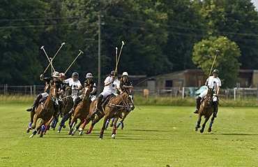 Polo, polo players chasing after a ball, polo competition, Berenberg High Goal Trophy 2008, Thann, Holzkirchen, Upper Bavaria, Bavaria, Germany, Europe
