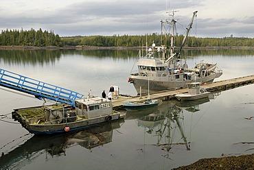 Fishing cutter and boats near Prince Rupert, British Columbia, Canada, North America