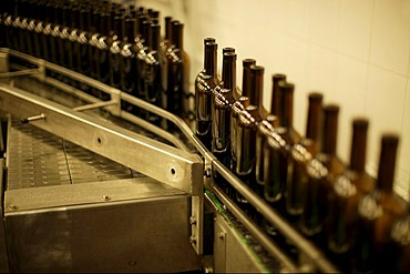 Wine bottles on production line