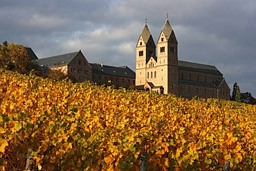 Sankt Hildegard Abbey above autumnally coloured vineyards near Ruedesheim, Rheingau, UNESCO World Heritage Site Upper Middle Rhine Valley, Hesse, Germany, Europe