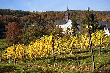 Autumnal view of Eberbach Abbey, Rheingau, Hesse, Germany, Europe