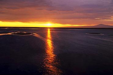 Laguna Chaxa at Sunset, Salar de Atacama, Chile, South America