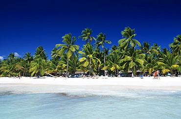 Palm beach on Saona Island, Parque Nacional del Este, Dominican Republic, Caribbean