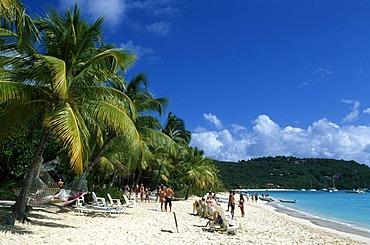 Palm trees on a beach, White Bay on Jost Van Dyke Island, British Virgin Islands, Caribbean