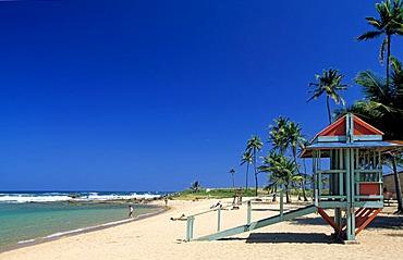 Beach with palm trees, Luquillo Beach, Puerto Rico, Caribbean