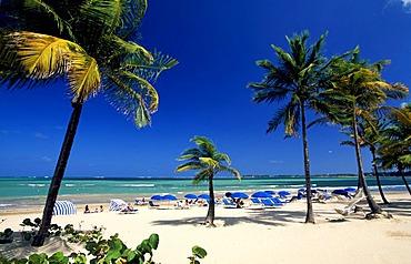 Beach with palm trees near San Juan, Puerto Rico, Caribbean