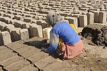 Brickworks, Ladakhi woman kneading clay bricks, Leh, Ladakh, North India, Himalaya