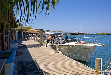 Jetty, boats, diving school, Hotel Anthony's Key Resort, Roatan, Honduras, Central America