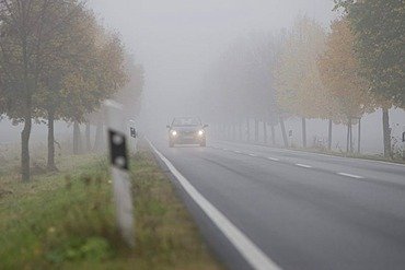 Car driving with dimmed headlights on a country road in dense fog, Hesse, Germany, Europe
