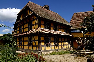 Historic Alsation half-timbered house, eco-museum, Ungersheim, Alsace, France, Europe
