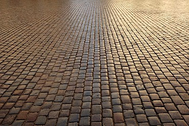 Backlit cobblestone pavement, Schwerin, Mecklenburg Western-Pomerania, Germany, Europe