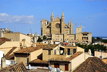 La Seu, the predominantly Gothic west front of the cathedral, residential buildings in the foreground, historic city centre, Ciutat Antiga, Palma de Mallorca, Mallorca, Balearic Islands, Spain, Europe