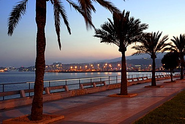 Promenade with palm trees and a sea view along the Autopista de Llevant shortly after sunset, Palma de Mallorca, Majorca, Balearic Islands, Mediterranean Sea, Spain, Europe
