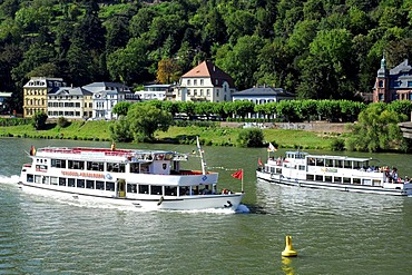 White ships on the Neckar River, in the back villas on the riverbank, Heidelberg, Neckar Valley, Baden-Wuerttemberg, Germany, Europe
