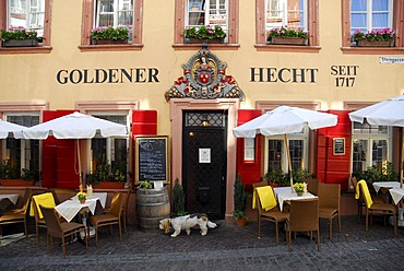 Goldener Hecht Restaurant with Austrian specialities, tables outside, facade, main entrance, historic center, Heidelberg, Neckar Valley, Baden-Wuerttemberg, Germany, Europe