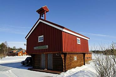 Swan Farmyard, Melkefoss Cultural Center near Kirkenes, Finnmark, Lapland, Norway, Scandinavia, Europe