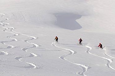 Ski hikers descending from the peak of Mount Joel, skiing tracks, slalom tracks, powder snow, Wildschoenau, Tyrol, Austria, Europe