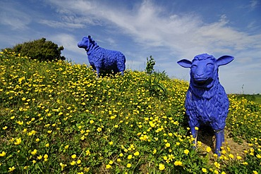Art, blue sheep near the Amsinck House, North Frisia, North Sea, Schleswig-Holstein, Germany, Europe